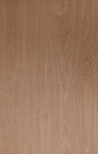 Ellmau Beech thickness 18mm